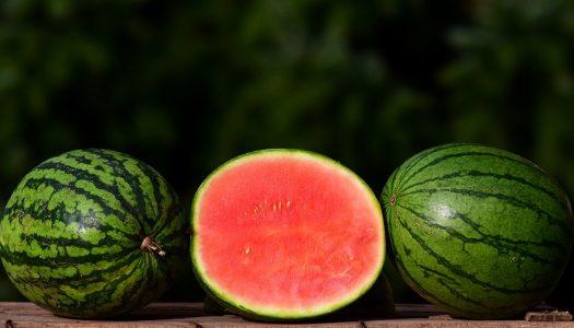 Meloen met rood fruit en vanilleroom