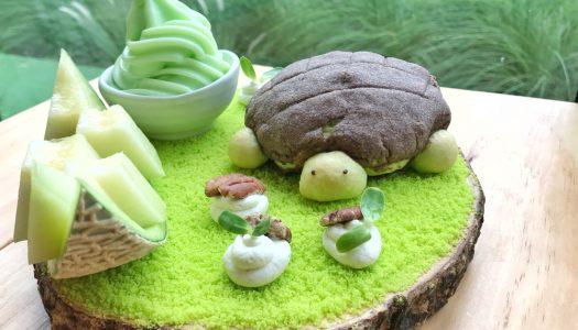 Meloenijs met chocolade